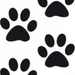 Huellas de perro en la pared o el suelo