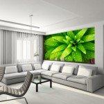 Fotomurales ecológicos para grandes salas