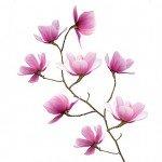 Magnolias magníficas, un vinilo decorativo de IKEA