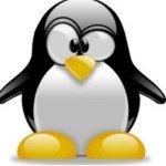 Decora con el Pingüino de Linux tu espacio