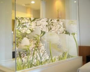 Vinilo decorativo imagenes para ventanas vinilos decorativos - Cristales decorativos para puertas de interior ...