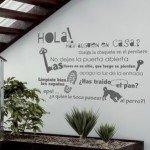 Vinilo Decorativo textual para tu espacio