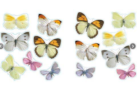 Vinilo decorativo mariposas de leroy merlin vinilos - Papel vinilico para cocinas leroy merlin ...