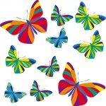 Mariposas por doquier y en vinilo